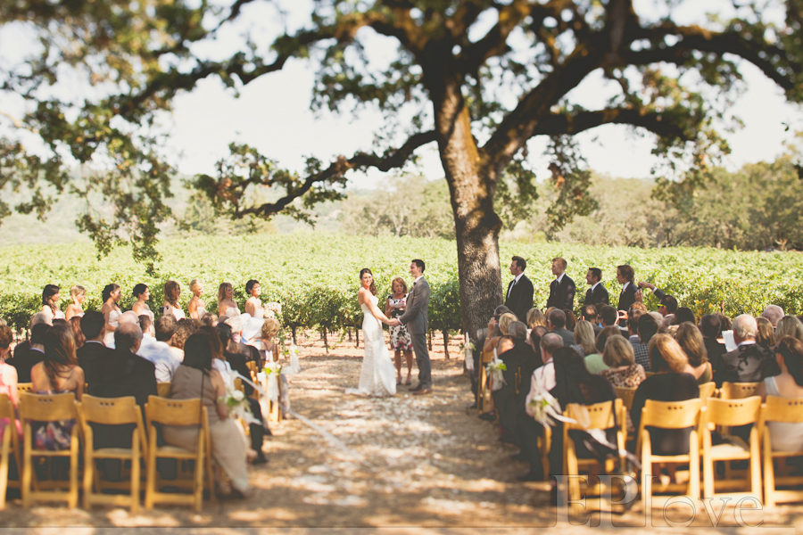 Founded in by Bruce R. Cohn, B.R. Cohn Winery and Olive Hill Estate Vineyards are located in the heart of the Sonoma Valley. Offering a full line of ult.
